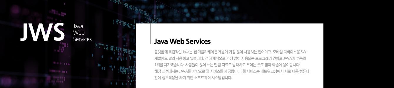 자바 웹 개발자 양성
